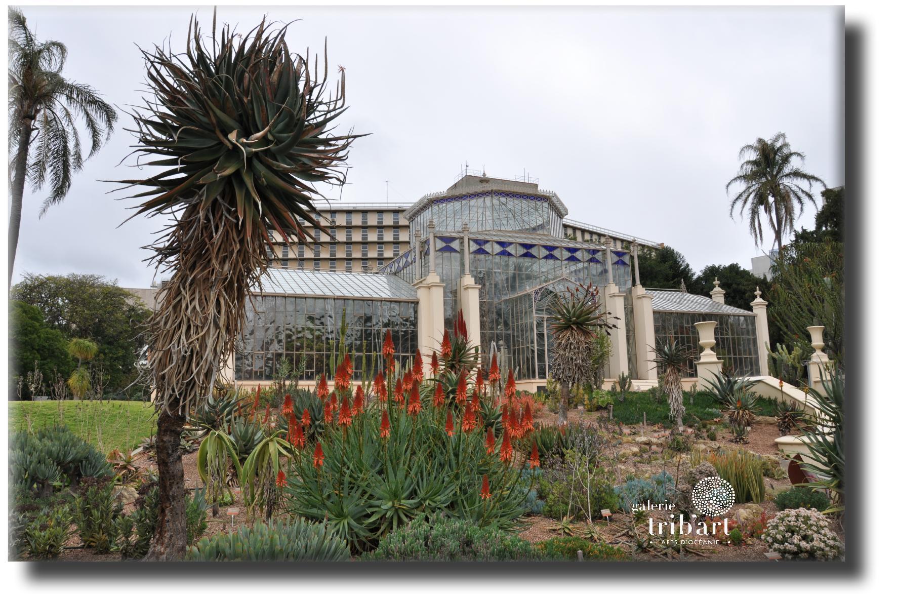 Le Jardin Botanique d'Adélaïde
