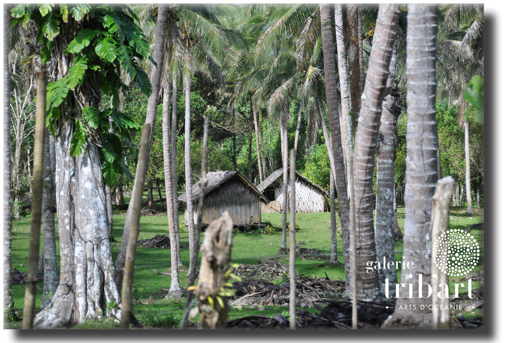 Vanuatu Women s Water Music (page 19)