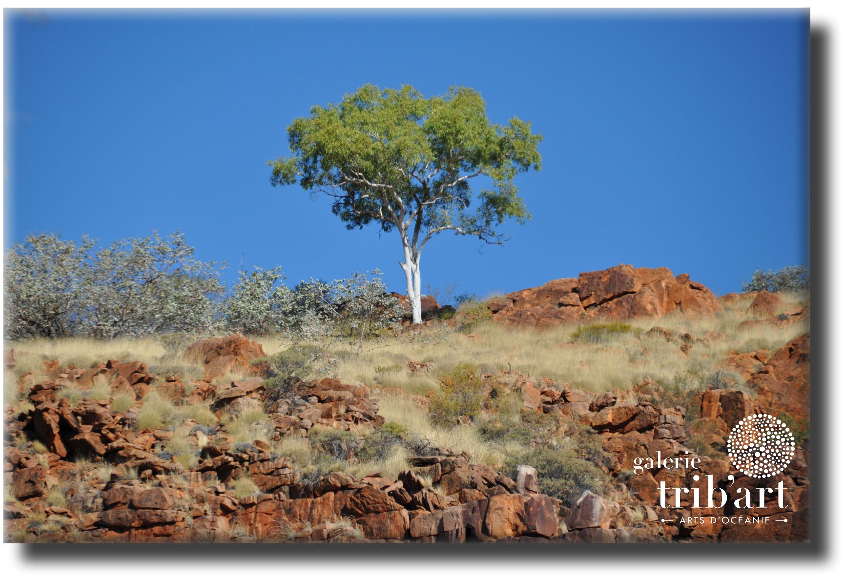 petroglyphes aborigènes (page 14)