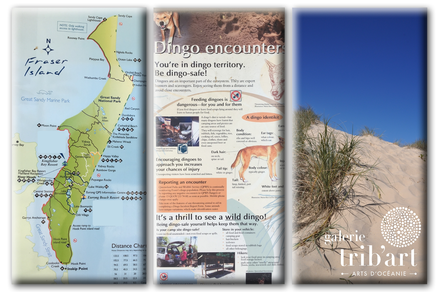 Fraser Island 2019 Couv (page 2)