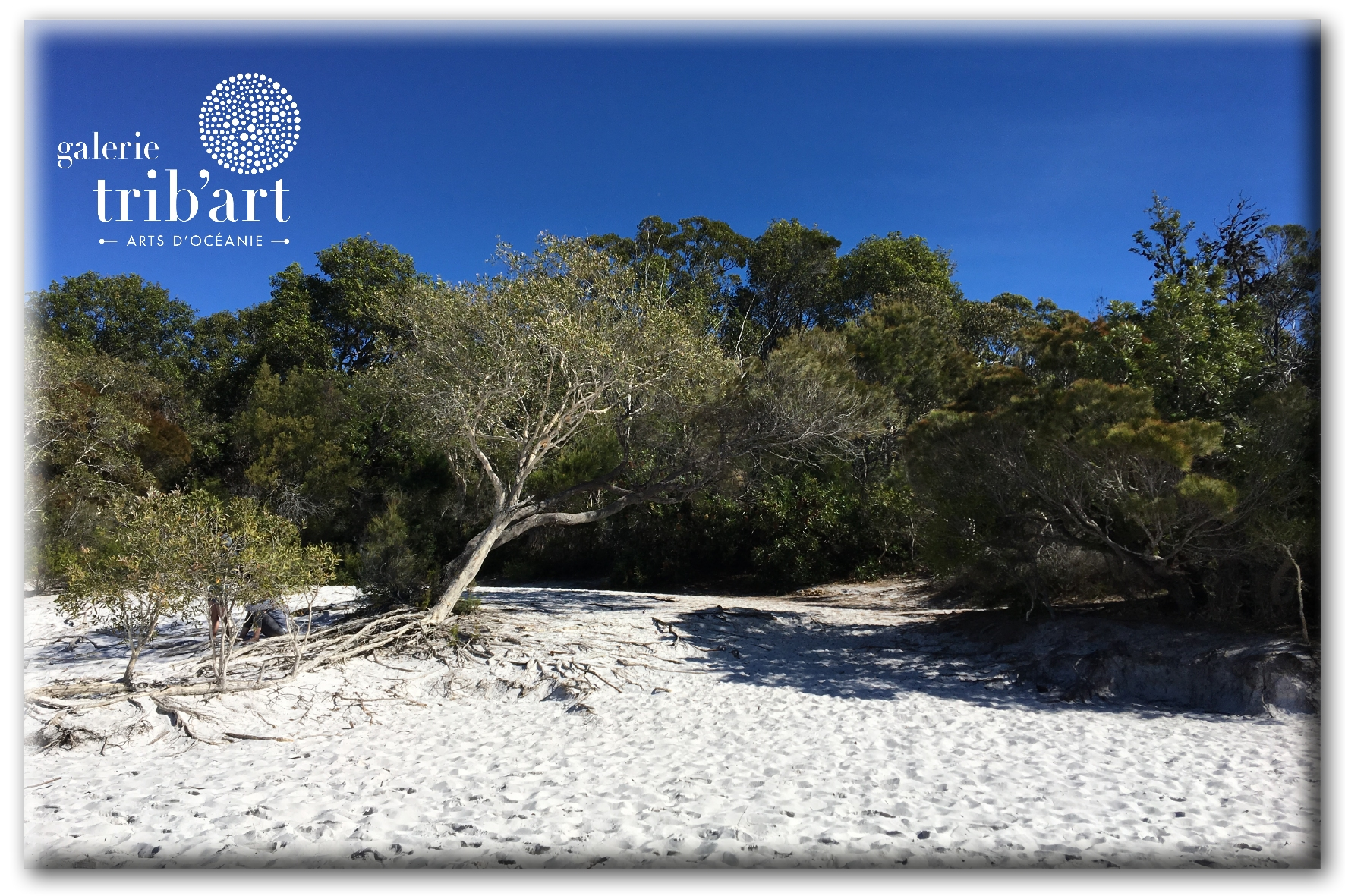 Fraser Island 2019 Couv (page 6)