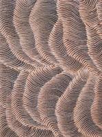 Dunes de Sable - Maureen Hudson Nampinjinpa